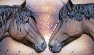 Born Free – Alberta Wild Stallions